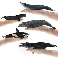 Ocean Animal Zoo Whale Serie Figure Collector Toy Science Educational Model Gift