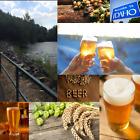 1 Gallon Nano-brew   Greenbelt Pale Ale [Partial Mash] Recipe Kit