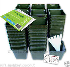 150 Plastic Nursery Plant Pots Kit w/ 10 Seedling Labels, Growing Guide Seed Crd