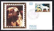 MONACO   enveloppe 1er jour   expo canine  chiens des pyrénées    1977