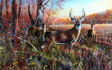 "The Gathering Deer Buck Print by Jim Hansel  Image 16"" x 12"""