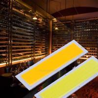 12V 10W Kolben Panel Licht LED Streifen Lampen Birne 120X36mm Warmes Weiß/Weiß