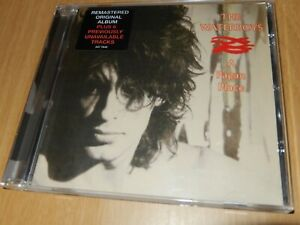 The Waterboys - A Pagan Place [CD]Remastered+6 Extra Tracks 2001 Chrysalis