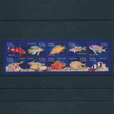 [CU252] Curacao 2014 Marine life fish Miniature sheet MNH