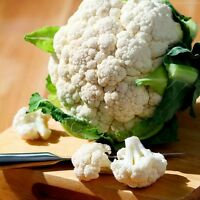 Cauliflower Seeds, Snowball Y Improved, Heirloom Cauliflower Seed, Non-Gmo 100ct