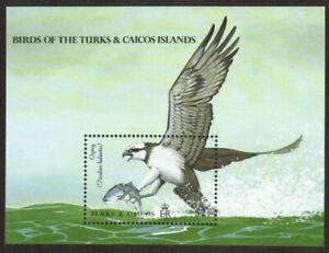 Turks & Caicos Stamp - Osprey Stamp - NH