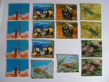 15 Bhutan 3-D Stamps 1969 & 1970 NH Mint