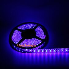 DC24V  5050 Flexible LED Light RGB White LED Strip light  60LEDs/m 5m/reel
