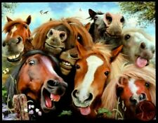 Horses Mane Selfie Smiling Funny Faces - Small Blank Greeting Note Card New