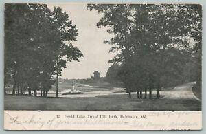 Baltimore Maryland~Druid Lake At Hill Park~Vintage Postcard