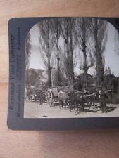 Stereo View Stereo Card - Chile