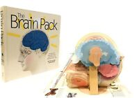 The Brain Pack Ron Van der Meer and Ad Dudink Pop Up Book Interactive New RARE