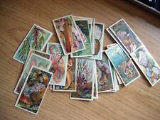 Fish/Sea Original Collectable Player's Cigarette Cards