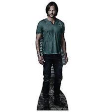Supernatural Sam Winchester Jared Dean Lifesize Standup Cardboard Cutout 1812