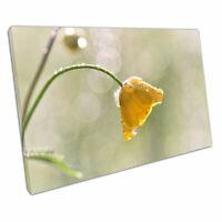 "Print on Canvas Yellow Daffodil Flower Canvas Wall Art 30x20"""