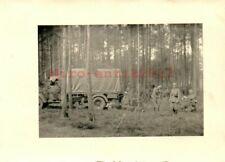 Foto, Wk2, N.E.A.4, Funk Antenne im Wald, Nancy, Frankreich, 1940 (G)21081