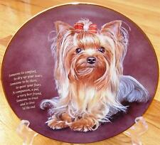 Danbury Mint Yorkshire Terrier Someone to Comfort Limited Edition Plate + Box