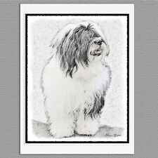 6 Bearded Collie Dog Blank Art Note Greeting Cards