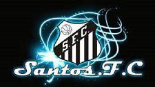 SANTOS FC ACADEMY SESSIONS COACHING DVD - FOOTBALL TRAINING soccer skills
