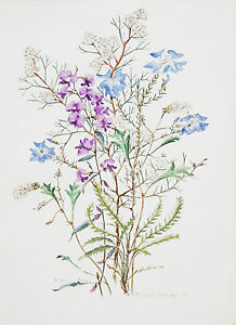 PHILIPPA NIKULINSKY (1942- ) RARE watercolour & book Western Australia 1975