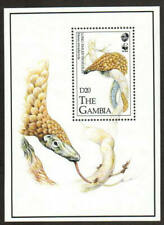 Gambia Stamp - Long-tailed pangolin-Wwf Stamp - Nh