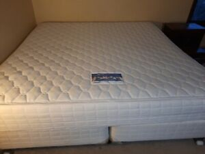 sealy king size bed