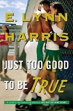 Just Too Good to Be True: A Novel by E. Lynn Harris