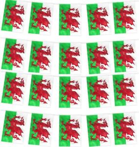 WALES BUNTING WELSH FOOTBALL EURO 2020 2021 DRAGON FLAG BANNER DECORATION PARTY