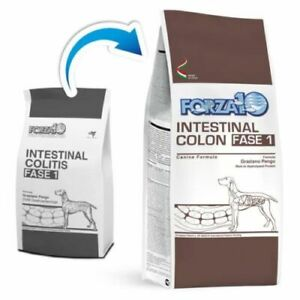 FORZA10 Active Intestinal Colon Phase 1 - kg.2 Croquettes Dog [Ex Int. Colitis]