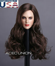 "1/6 Female Head Sculpt Long Curly Brown Hair For 12"" PHICEN Hot Toys Figure USA"