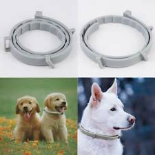 1Pc Anti Insect Flea Tick Collar Protection Adjustable For Pet Dog Cat 8 Month