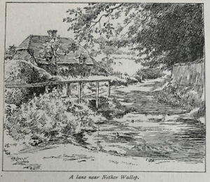 Lane near Nether Wallop - Hampshire - 1919 Vintage Cutting Clipping Print