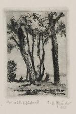 C.H. REUSCH, Baumstudie, 1955, Radierung, 1. Zustandsdruck