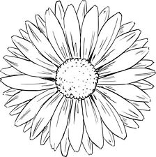 Flower - Flowers - Single Head - Sunflower#2 Unmounted Clear Stamp Approx60x60mm