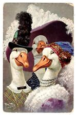 POSTCARD THIELE SIGNED DUCKS DRESSED IN HATS T.S.N. SERIES 1413