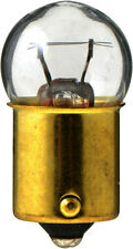 Courtesy Light Bulb-Estate Wagon Philips 631B2