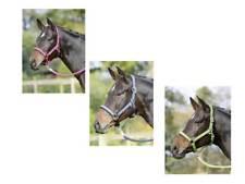 Halfter, Stallhalfter-Set EINHORN, Unicorn mit Führstrick für Shetty und Pony