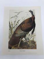 John James Audubon Folio Plate 1 Wild Turkey Limited 750