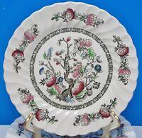 "Myott Staffordshire England DYNASTY (Swirled) ""IndiaN Tree"" Dinner Plates (8)"
