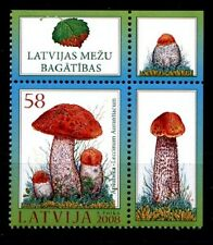 Pilze. Espenrotkappe. 1W. Eckrand(1). Lettland 2008