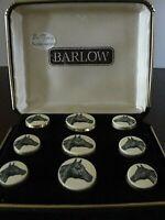 Horsehead Scrimshaw Button Set by Barlow, NIB