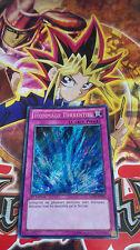 Carte Yu-Gi-Oh! Hommage Torrentiel LCJW-FR294 Secrète Rare Française