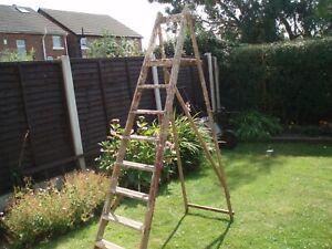 Vintage decorators ladder