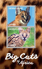 Sierra Leone - Big Cats of Africa Stamp - Souvenir Sheet MNH