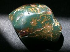 Beautiful GREEN Amber Fossil GIANT 162 g Polished Piece Very RARE