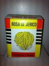 ROSE OF JERICHO PLANT ( ROSA DE JERICO ) 1 PLANT PER BOX