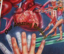 CHILDCRAFT ANNUAL Our Amazing Bodies   child craft annual 1996 unread