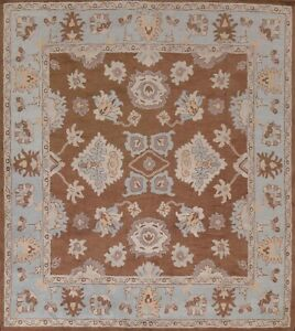 Brown Floral Traditional Oriental Area Rug Hand-Tufted Wool Square Carpet 10x10