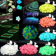 100x Glow In The Dark Night Pebble Home Garden Walkaway Aquarium Fish Tank Stone