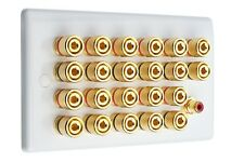 Slimline White 11.1 Speaker Wall Plate Gold 22 Binding Posts + 1 RCA